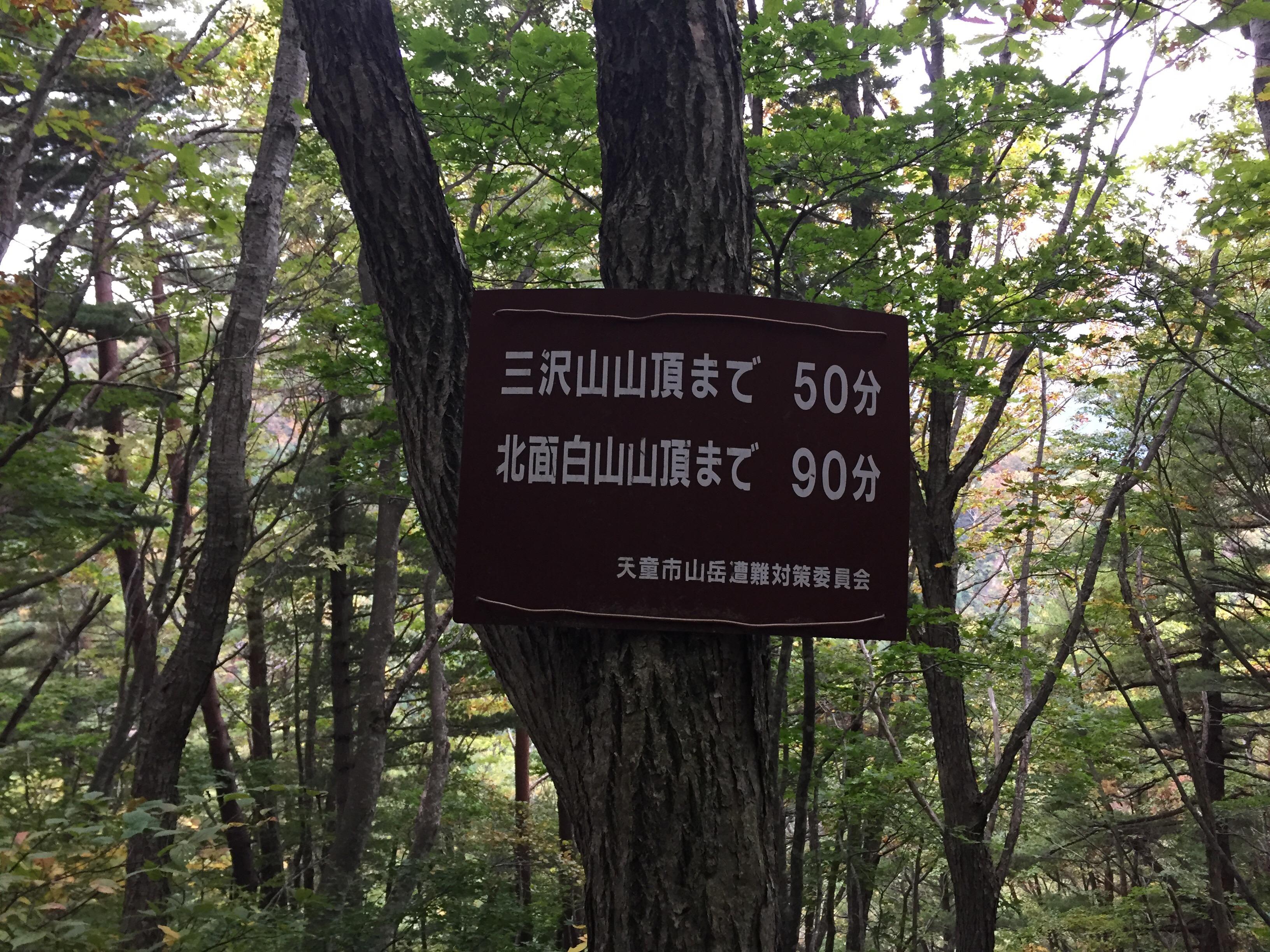 北面白山 三沢山 西尾根コース
