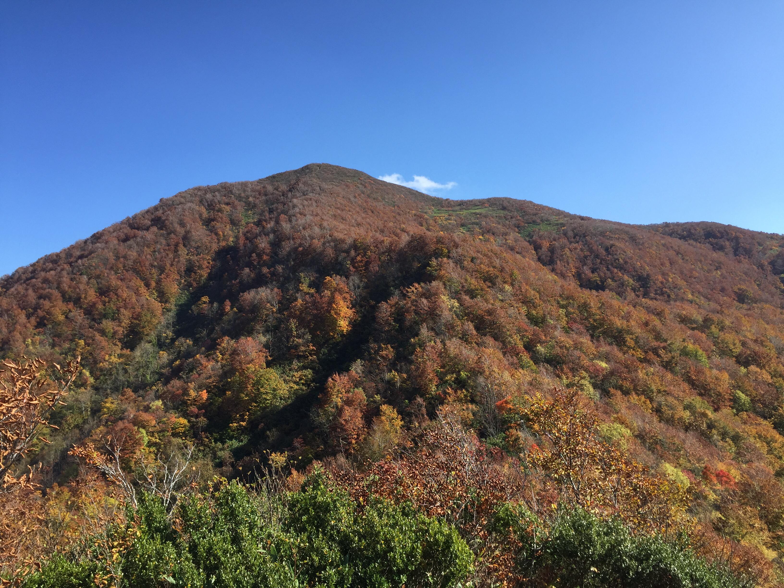 山形百名山 北面白山 西尾根コース