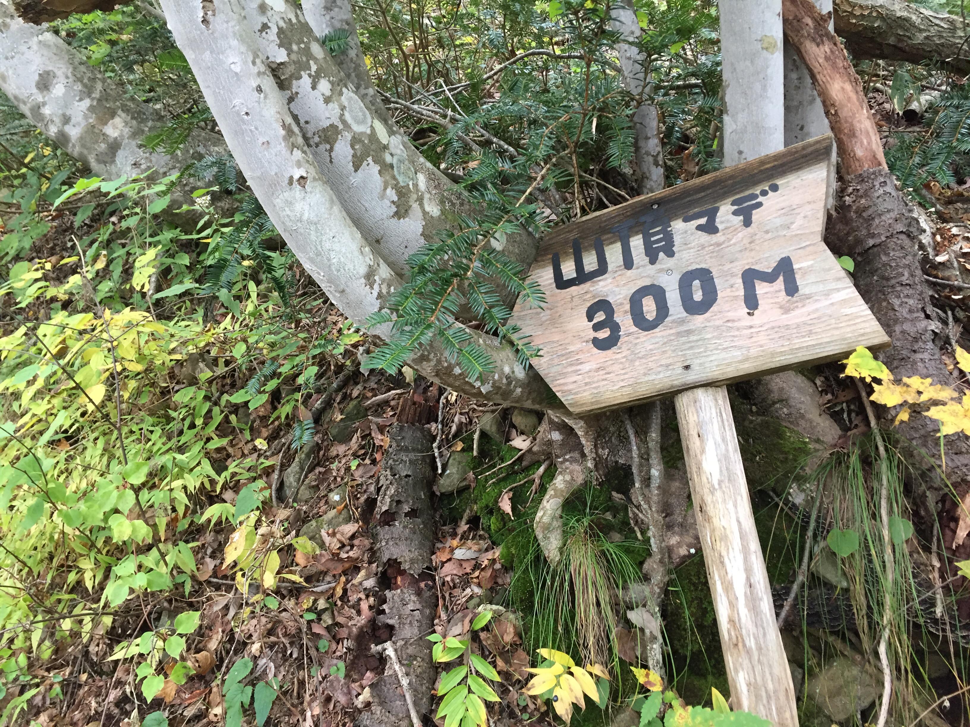 山形百名山 三吉山 登山コース
