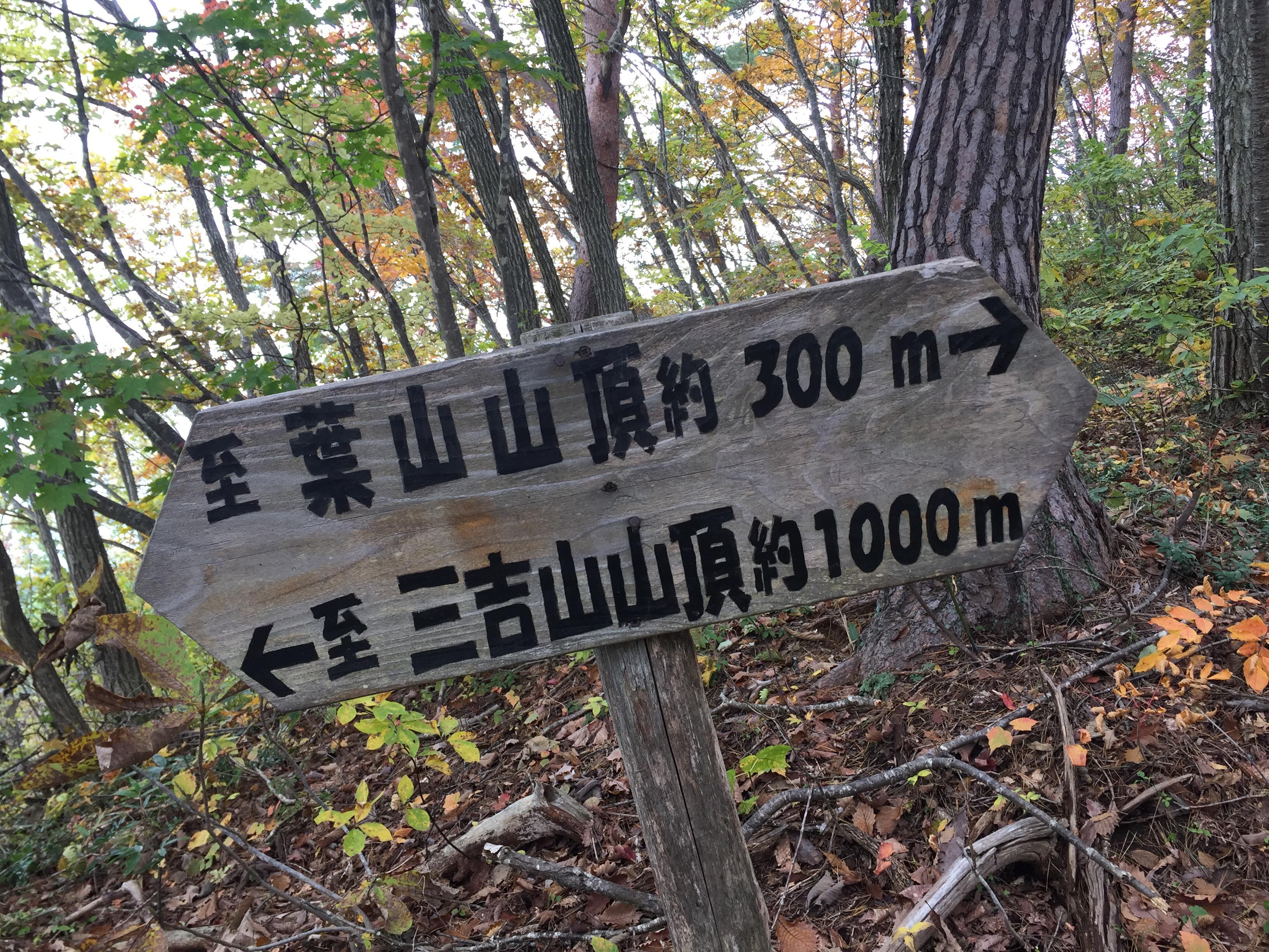 上山 葉山 登山道