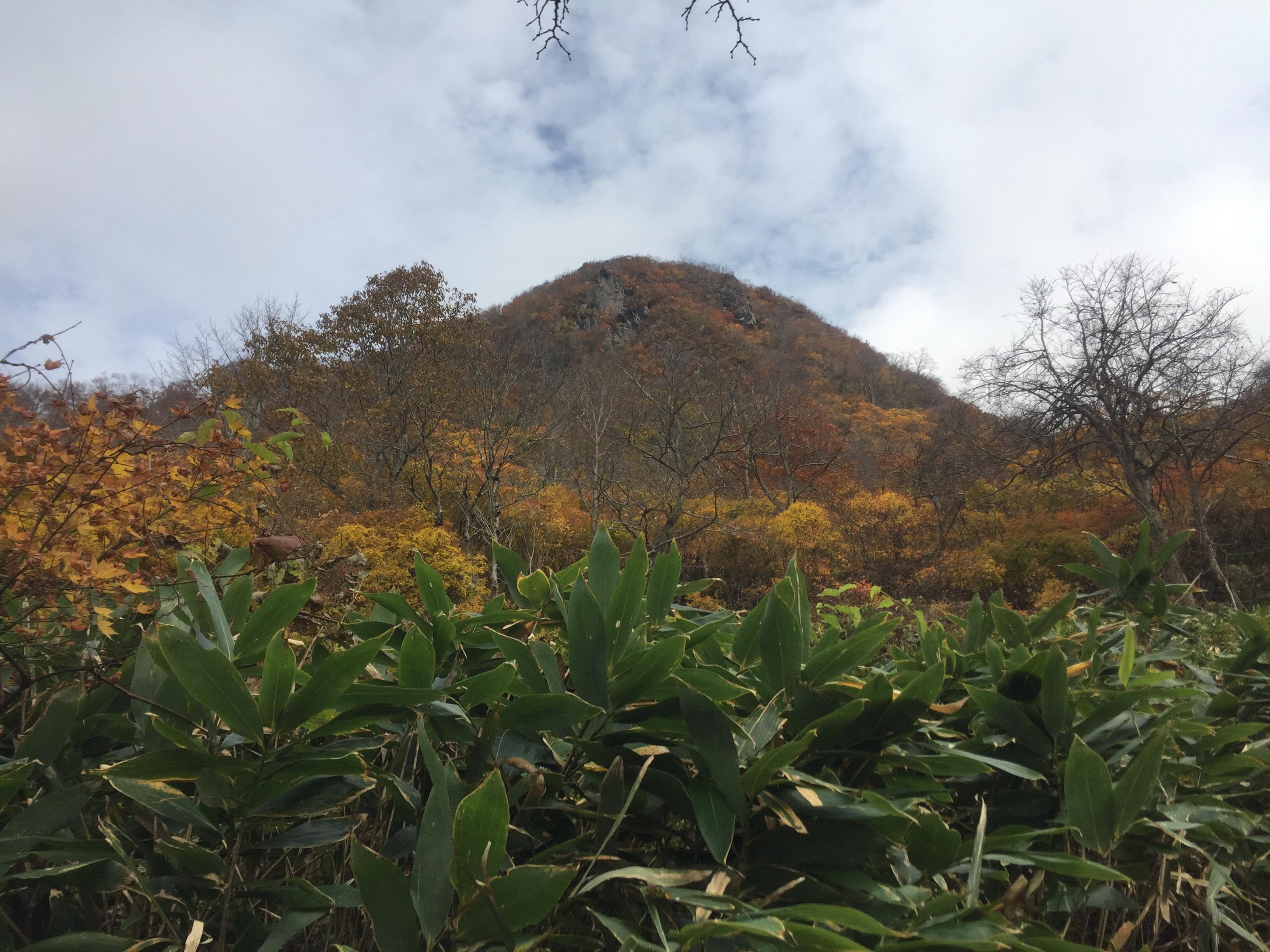 二ツ森 山形百名山 北峰 男山
