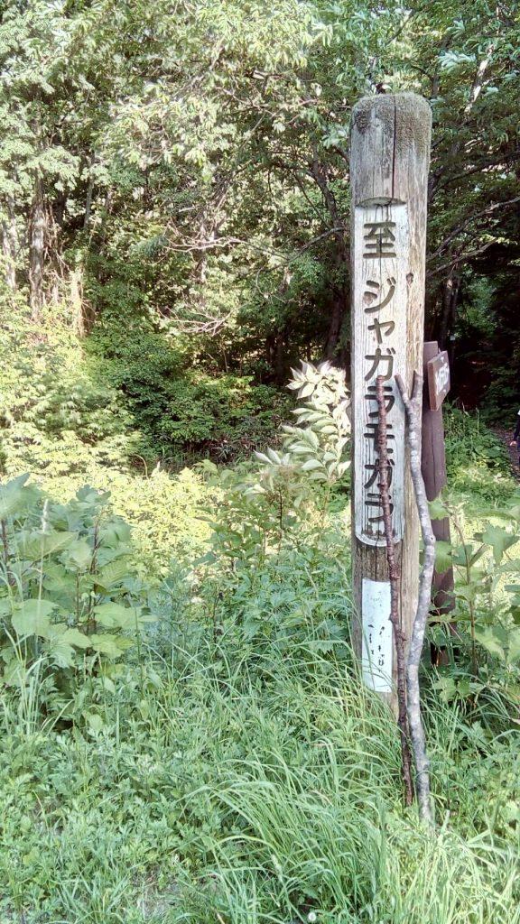 ジャガラモガラ 散策コース
