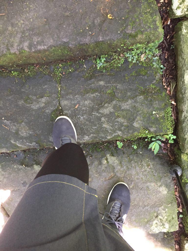 羽黒山 登山道 石段