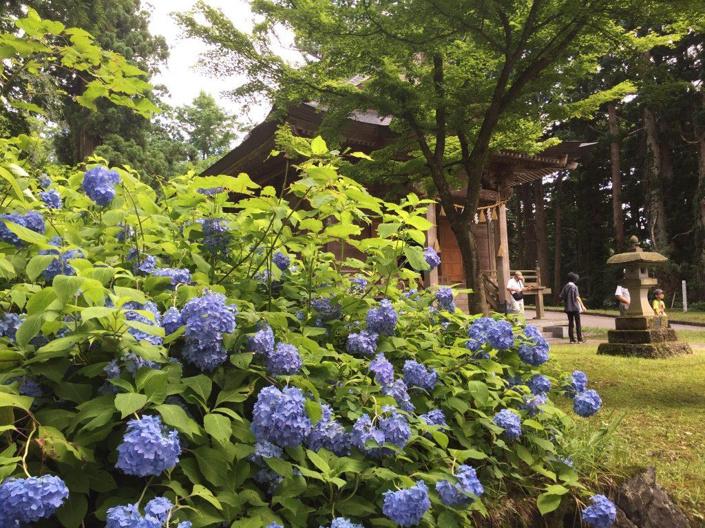羽黒山 山頂 神社