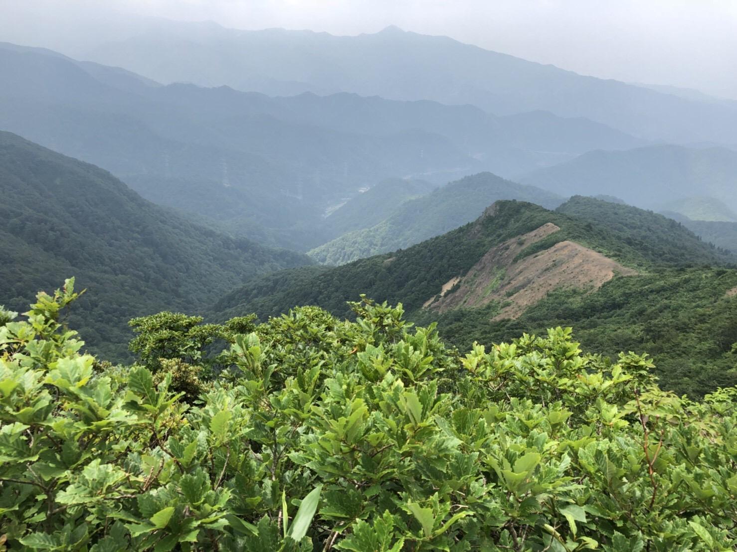 山形神室岳 山形百名山 登山道