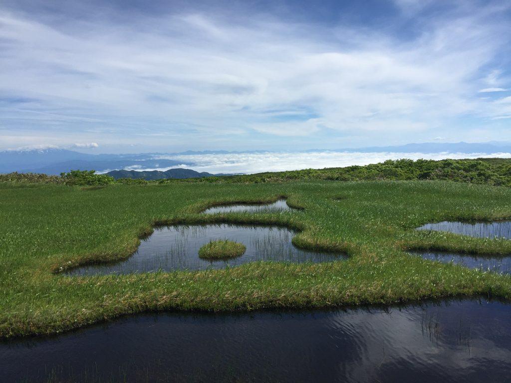 月山 日本百名山 山形百名山 弥陀ヶ原湿原 池塘
