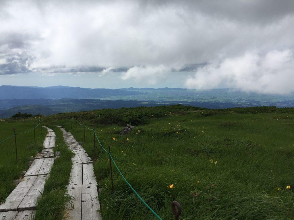 月山 日本百名山 山形百名山 ニッコウキスゲ