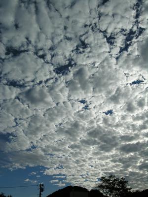 高積雲 ひつじ雲