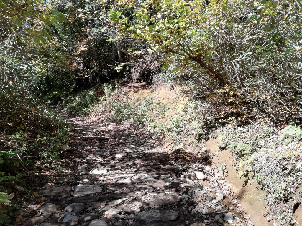安達太良山 登山道 馬車道