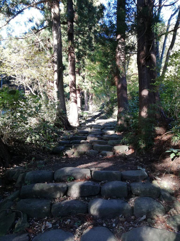 盃山 山形百名山 登山道 愛宕神社
