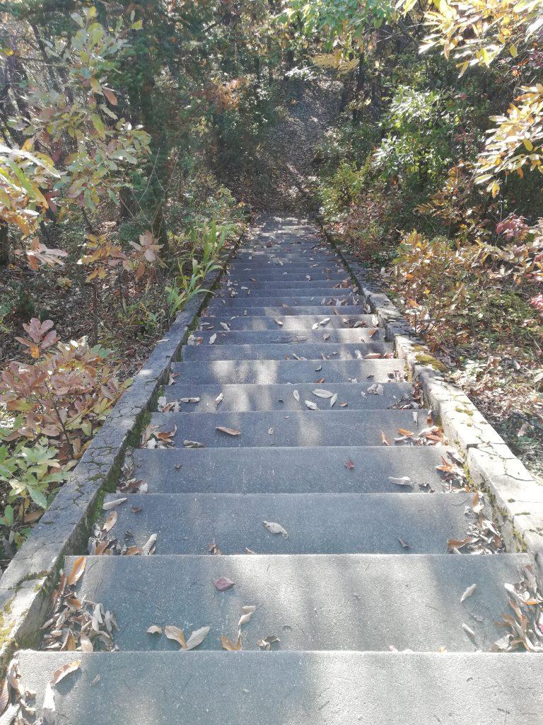 盃山 山形百名山 登山道