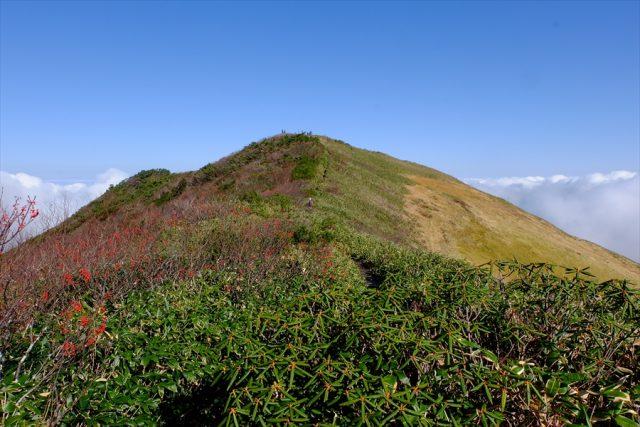 越後駒ヶ岳 日本百名山 稜線 尾根
