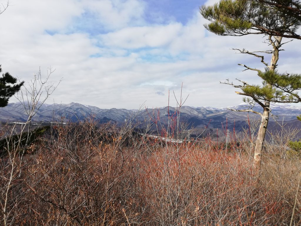 戸神山 山頂
