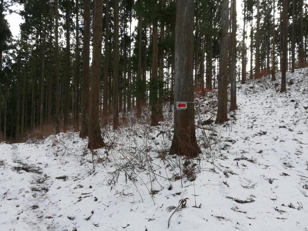 戸神山 登山道 水場