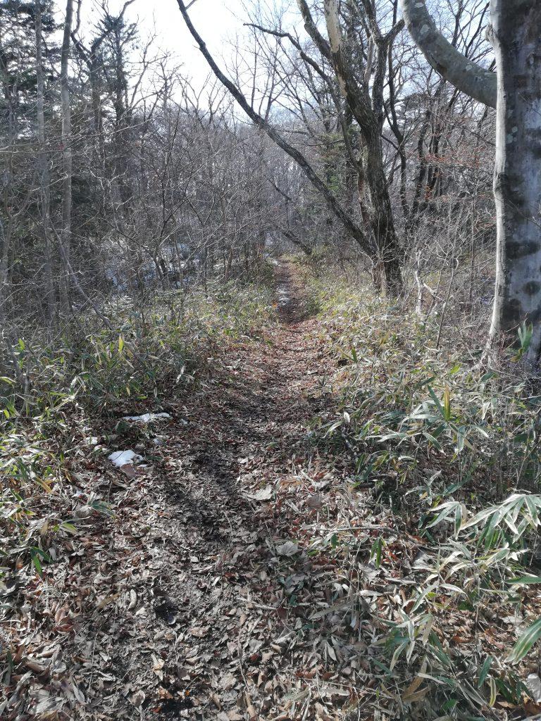 萱ヶ埼山 登山道