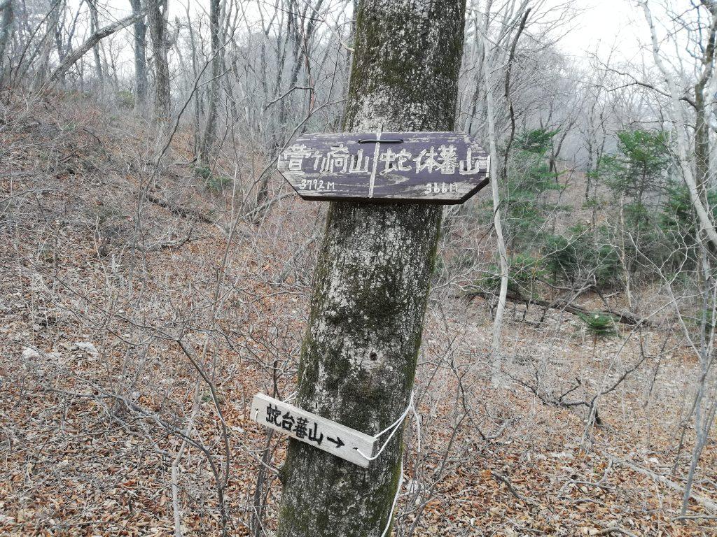蛇台蕃山 登山道
