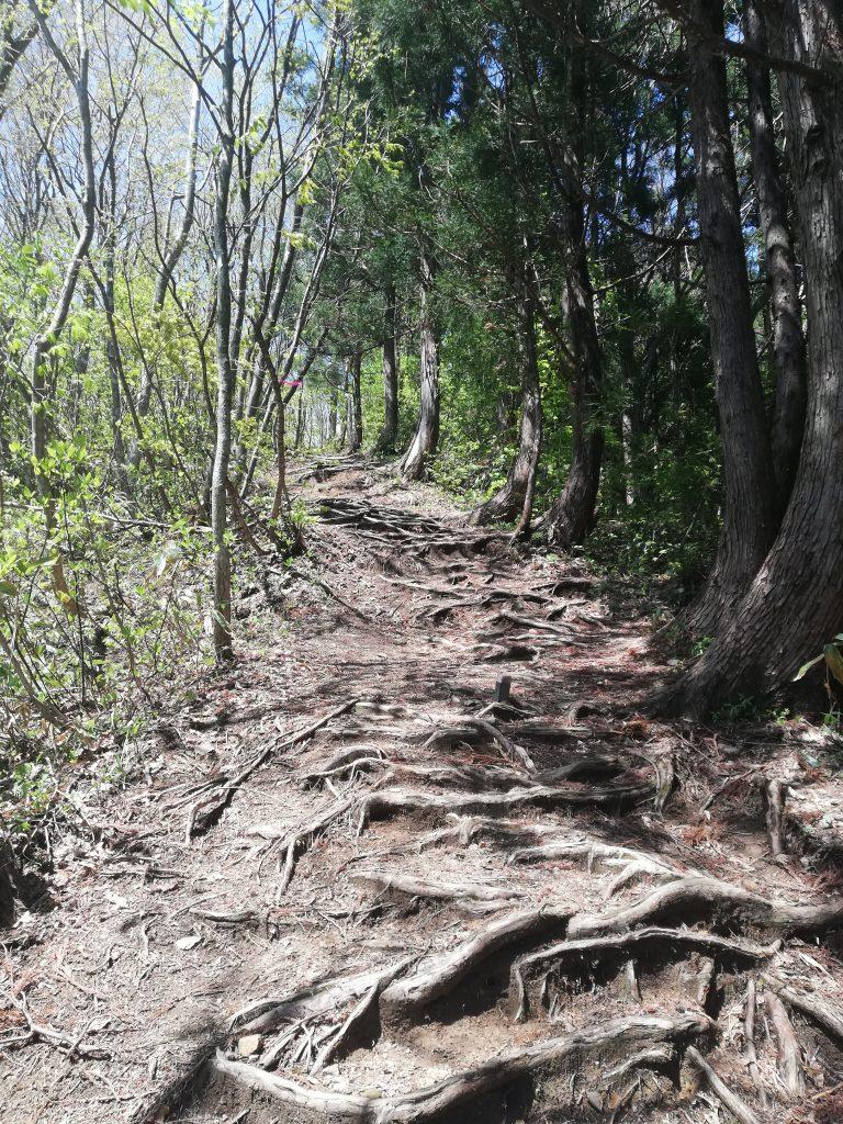 日本国 山形百名山 登山道