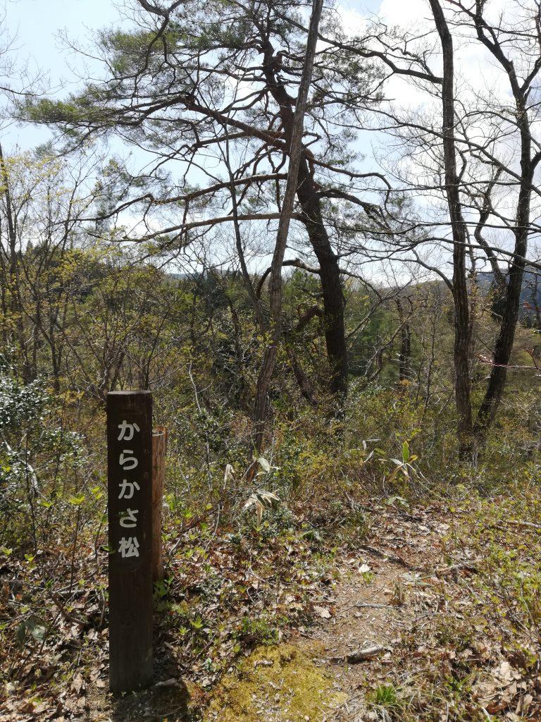天狗山 山形百名山 登山道 からかさ松