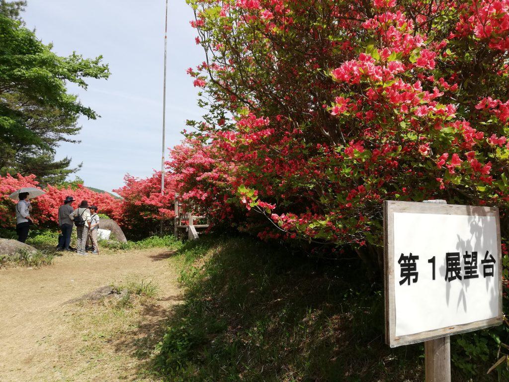 宮城県 徳仙丈山 つつじ祭り 第1展望台