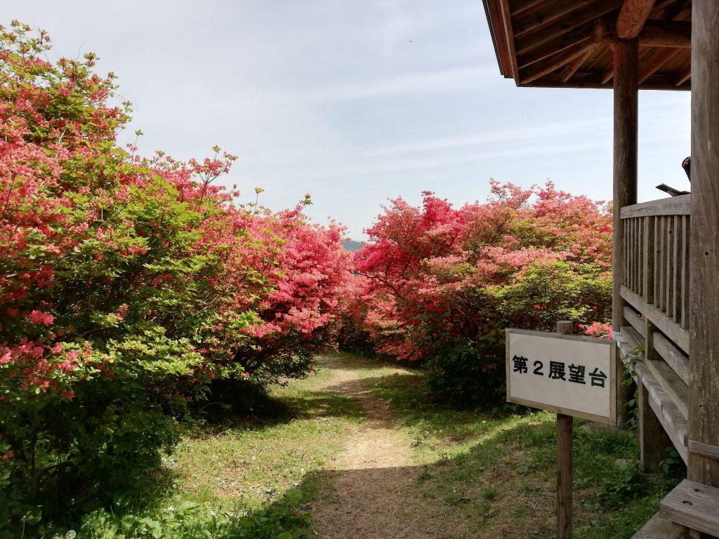 宮城県 徳仙丈山 つつじ祭り 第2展望台