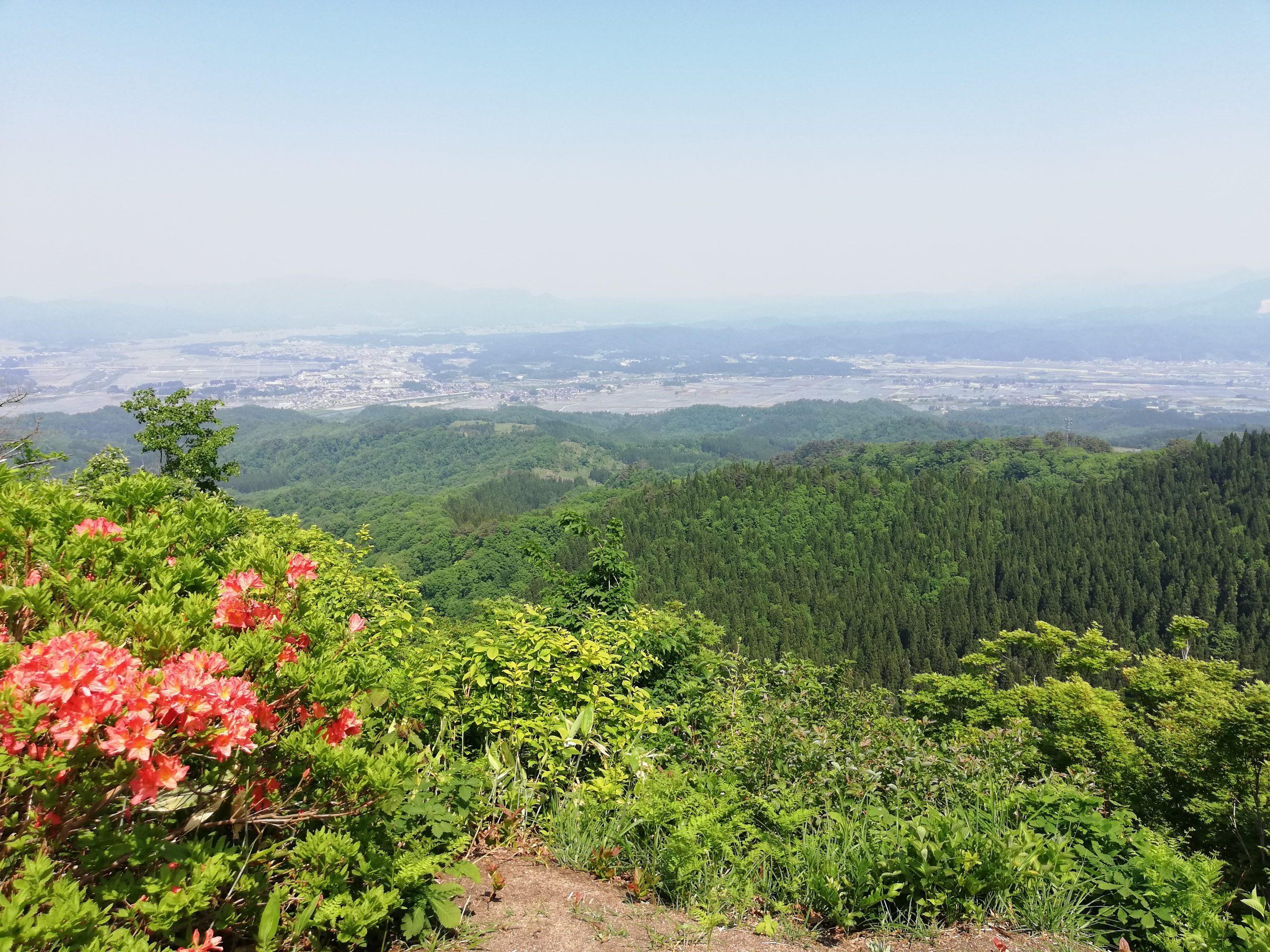 【大高根山】サクッと大高根山!整備の行き届いた素晴らしい登山道に感謝感激!