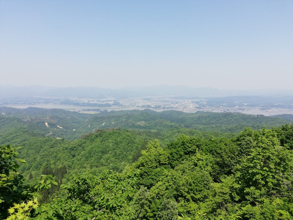 大高根山 山形百名山 山つつじの丘見晴所